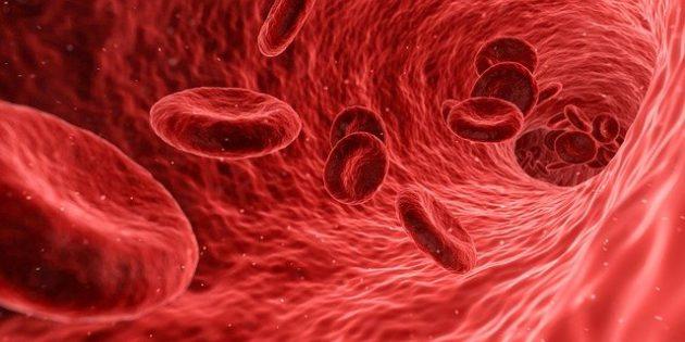 Simpósio de Atualizações em Imunologia Clínica e Científica tem programação até 6ª