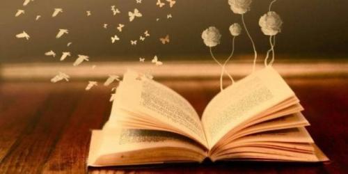 Prazo de devolução dos livros