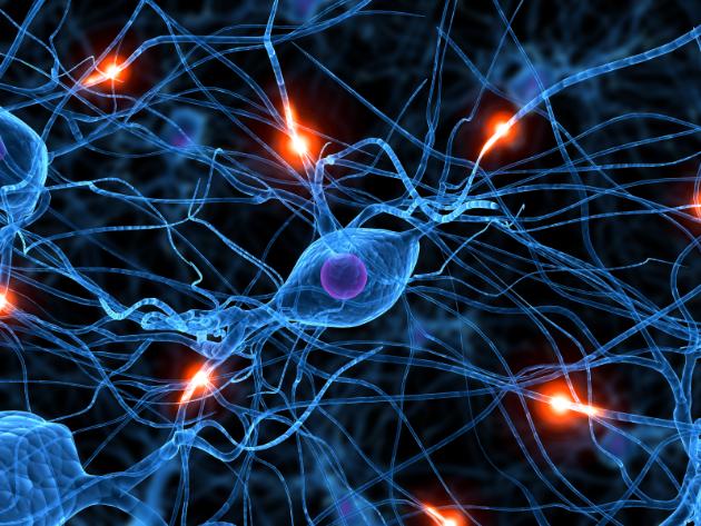 Pesquisador em neurobiologia é premiado internacionalmente
