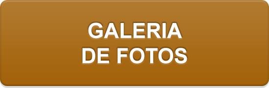 Galeria de fotos.