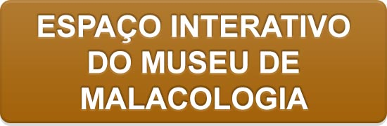 Espaço Interativo do Museu de Malacologia.