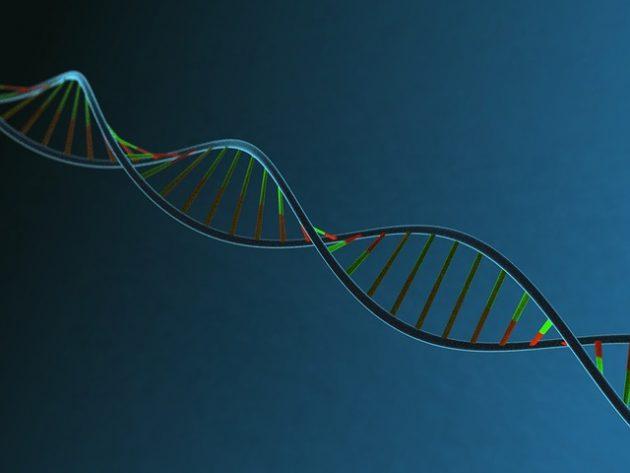 Estudo destaca combate à discriminação racial por meio do ensino da genética