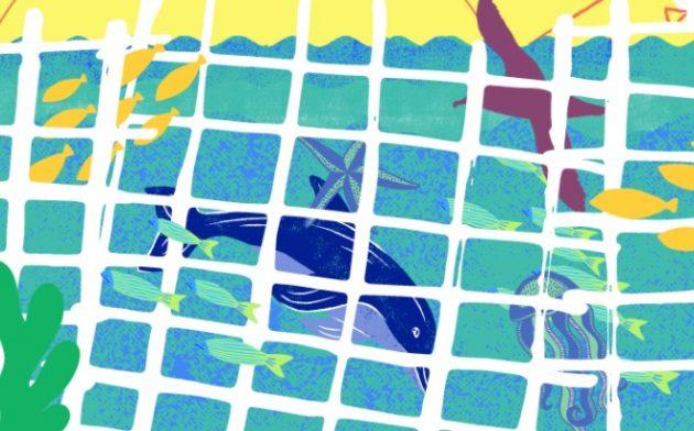 Pesquisadores alertam sobre riscos da pesca predatória à biodiversidade marinha