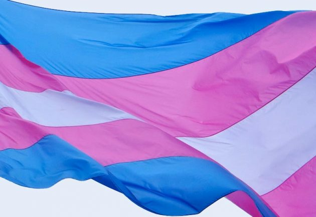 Dissertação avalia acesso da população trans à rede de cuidados à saúde