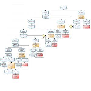 Árvore de decisão binária 2 (para site)