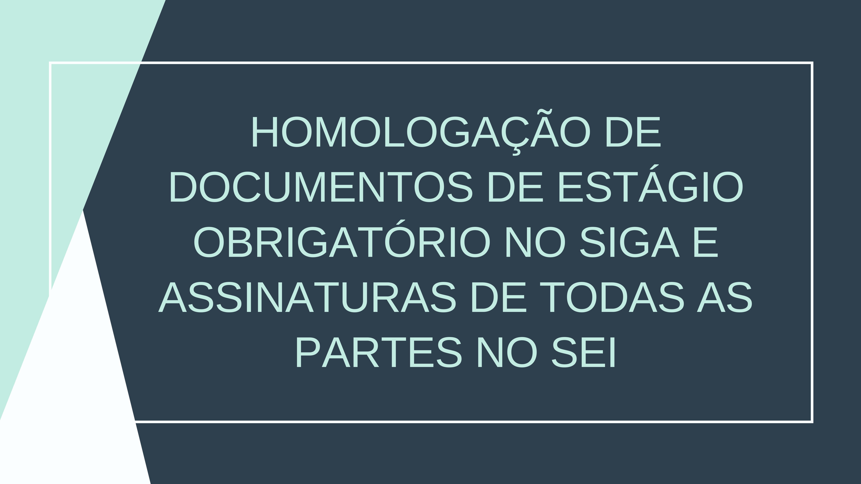 Homologação de documentos de estágio obrigatório no SIGA