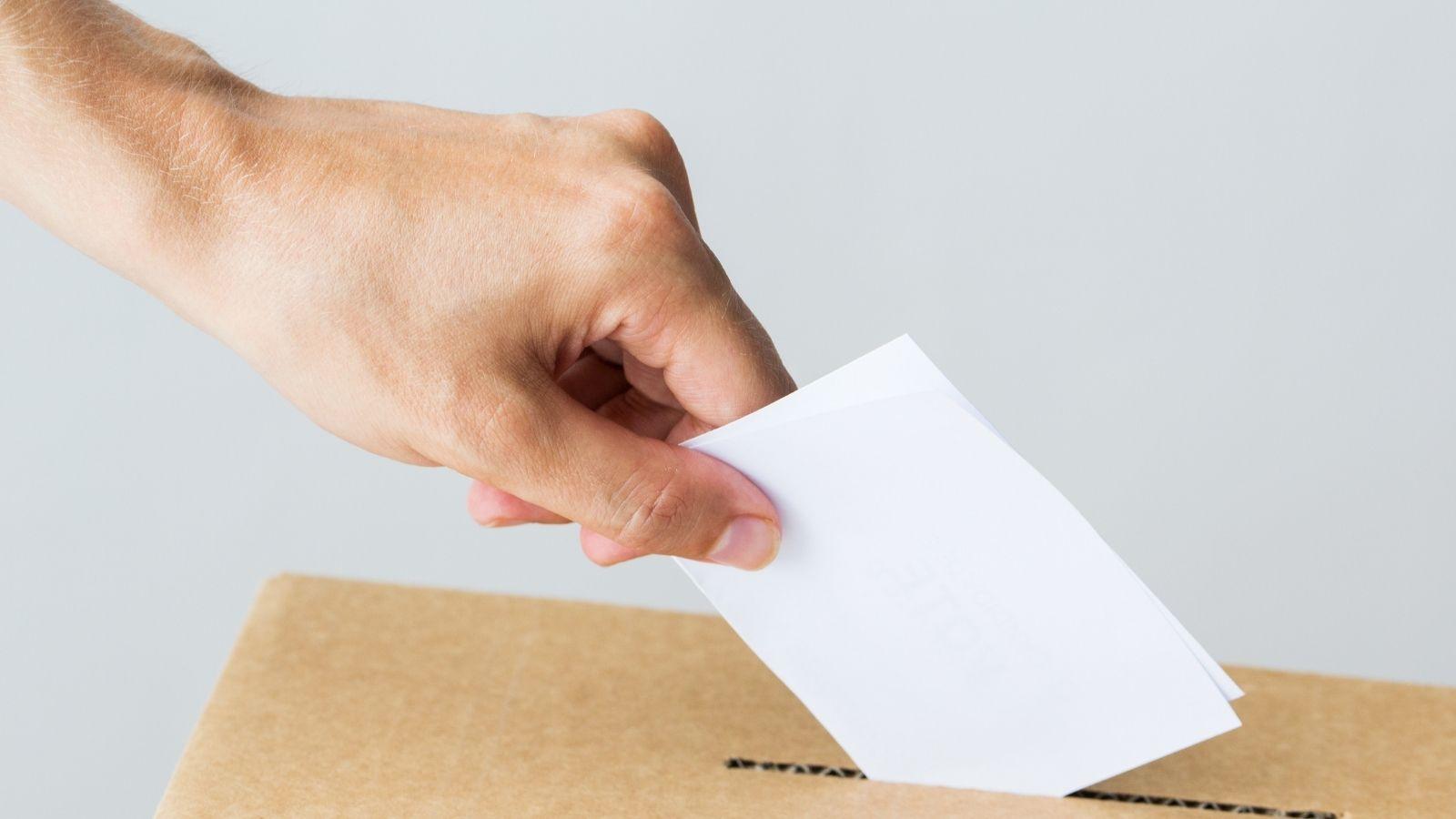 Eleição da Coordenação do Curso de Farmácia