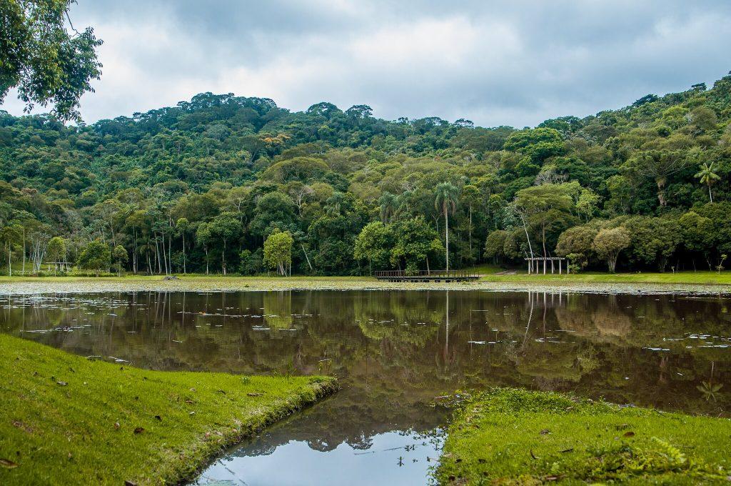 Lago superior, principal (Foto: Gabriela Maciel/UFJF)