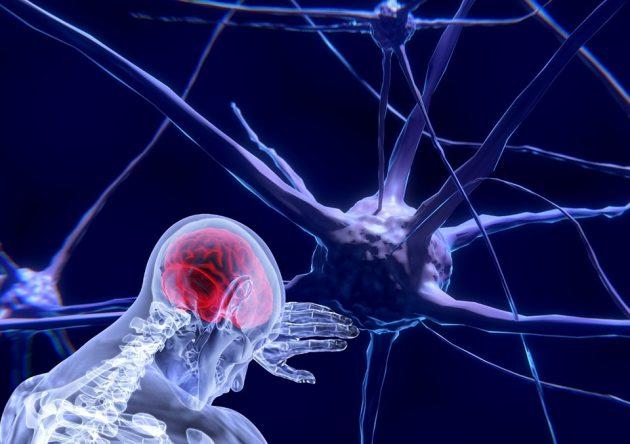 Liga de Neurociências está com inscrição aberta para congresso