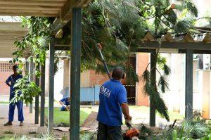 Equipe da Proinfra trabalhando na limpeza dos acessos ao ICE (Foto: Twin Alvarenga/UFJF)