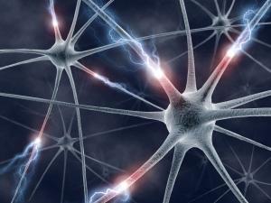 Francês Thierry Pozzo desenvolve pesquisas na área da neurociência (Imagem: fbobolas via VisualHunt.com/CC BY-SA)