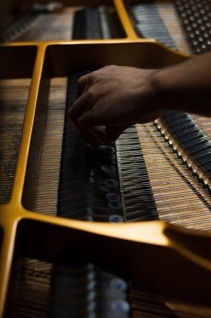 """""""A música é tudo isso, racional e irracional"""", afirma Castelões (Foto: Caique Cahon)"""