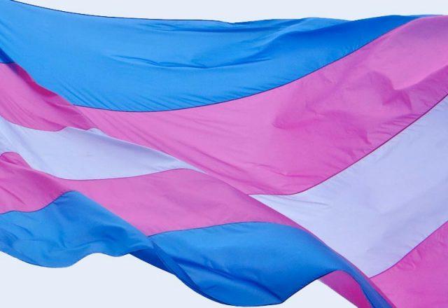 Evento promovido pelo Centro de Referência e Promoção da Cidadania LGBTQI+, em parceria com o Grupo de Apoio Força Trans, discute protagonismo da população transgênera (Imagem: Visualhunt)