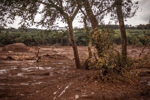Área devastada pela onda de rejeitos no bairro Parque Cachoeira em Brumadinho (Foto: Mária Otávia Rezende/UFJF)