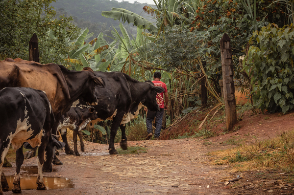 assentamento rural_juatuba_fotode_mariaotaviarezende_UFJF