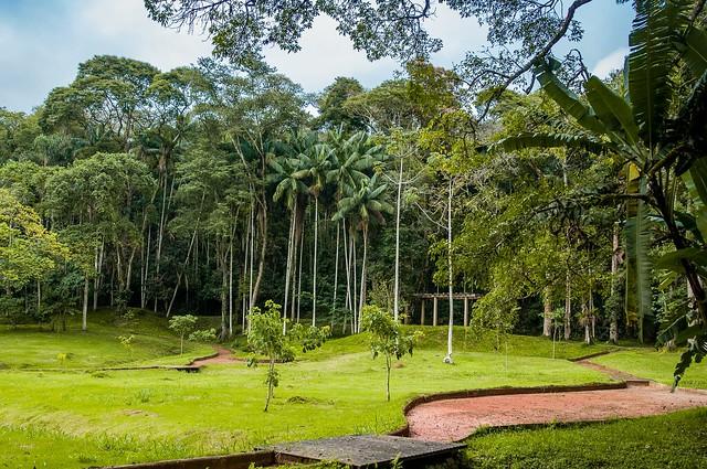 Jardim contribui para a lista de atrativos da cidade (Foto: Gabriela Maciel/UFJF)