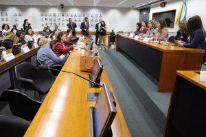 Reitoras das universidades públicas debateram políticas para educação (Foto: Cleia Viana/Câmara dos Deputados)
