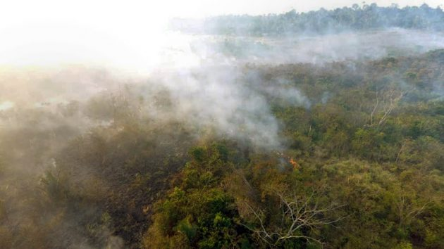 Paraopeba PA O combate das queimadas continua no município de Parauapebas, com o apoio do Exército Brasileiro. O Corpo de Bombeiros Militar do Pará, através do Grupamento de Combate a Incêndio Florestal, está atuando com 14 militares, que seguiram para várias regiões afetadas por queimadas do Estado.#OperaçãoFênix foto Bombeiros do Pará