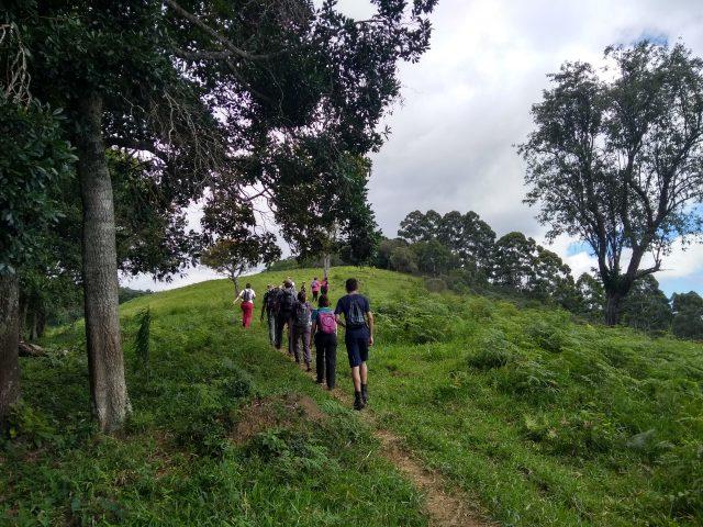 Parque Estadual da Serra do Papagaio, no sul de Minas Gerais, foi campo da pesquisa (Foto: arquivo pessoal)