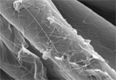 Nanotecnologia no combate ao coronavírus