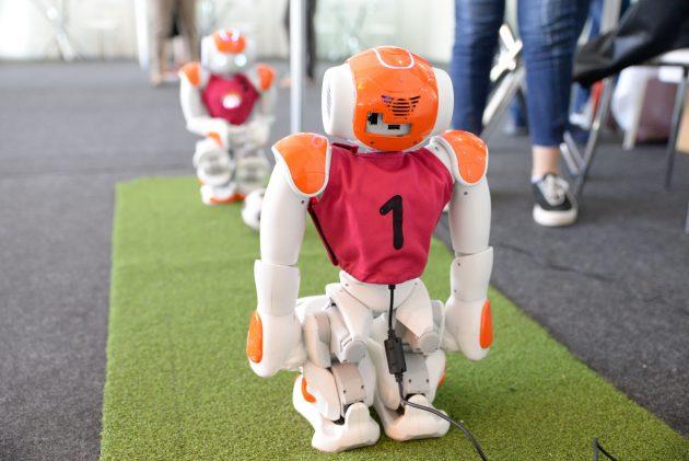 Projeto da Rinobot Team leva robótica a escolas do município