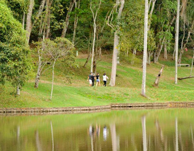 De Brasil a Cuba e de Aracaju a JF: público diverso visita Jardim Botânico em 1º dia de reabertura