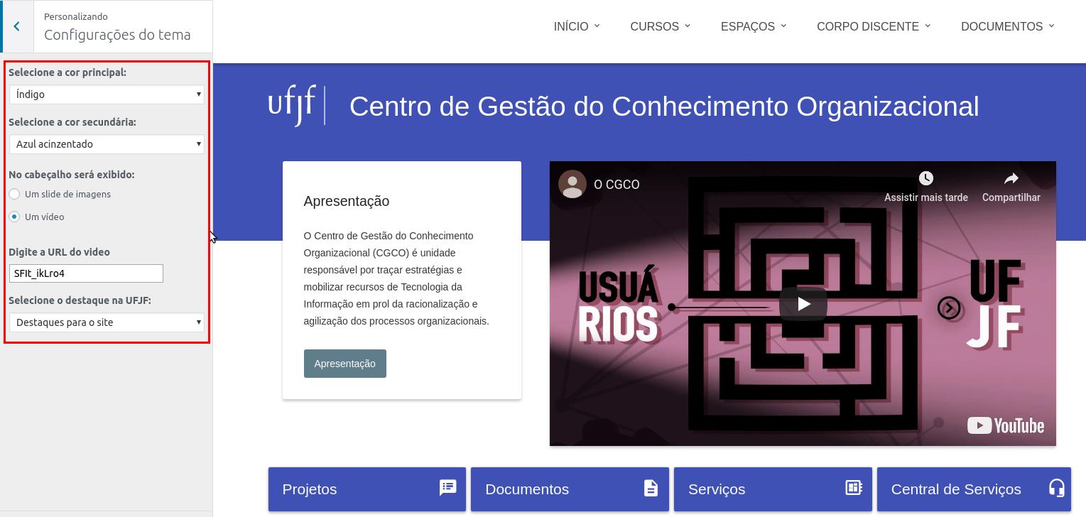 Imagem do site do CGCO onde é possível personalizar as configurações do tema.